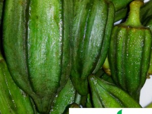 3 Exciting Ways to Cook Okro