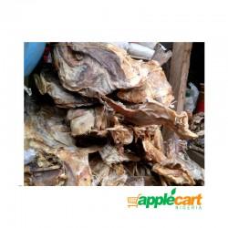 Stockfish head