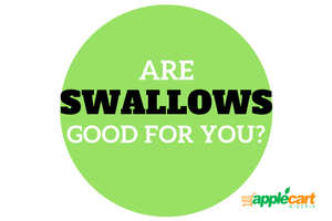 Are swallows good for you?