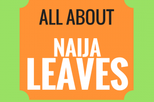 Leaves 101- Nigeria's Most Common Edible Leaves and Their Nutritional Benefits