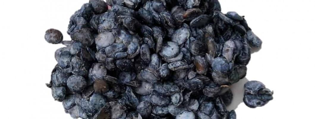 Top benefits of eating locust beans