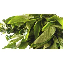 Ewedu leaves: large bunch