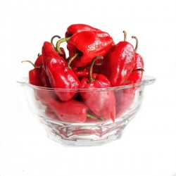 Tatase/tatashe pepper: 500g