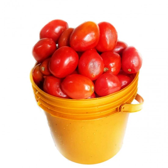 Tomatoes: 5kg