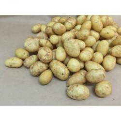 Irish potatoes: small heap
